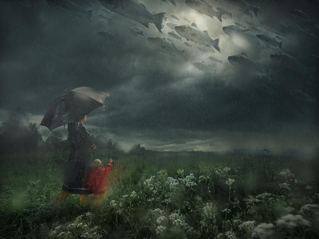 Lost in the Rain by alltelleringet