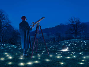 Looking for Stars