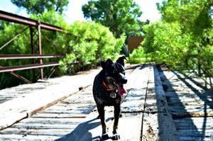 Crossing That Bridge by WovlenTales