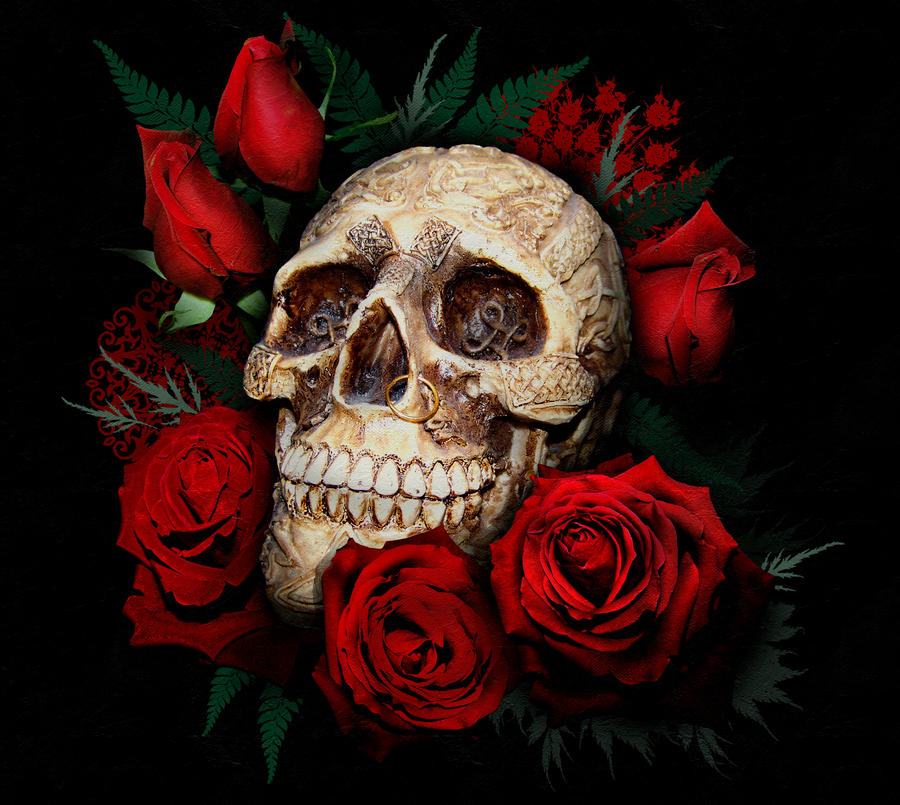 skull and red roses by serenitynme on deviantart. Black Bedroom Furniture Sets. Home Design Ideas