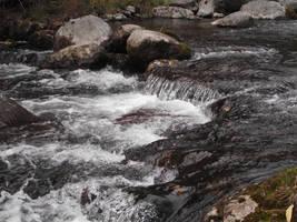 Water foams