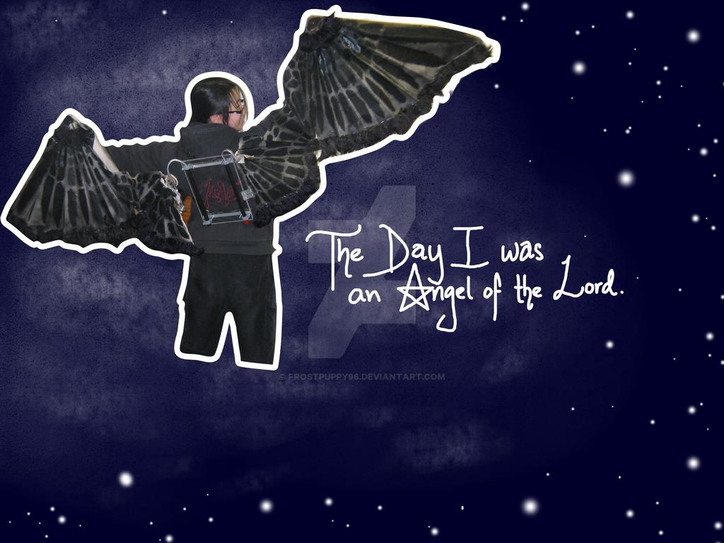 Supernatural Angel Wings by FrostPuppy96 on DeviantArt
