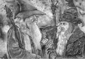 Gandalf the Grey and Radagast the Brown by Ilthin