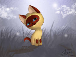 Kitten named Gav. by ApallonShinomia