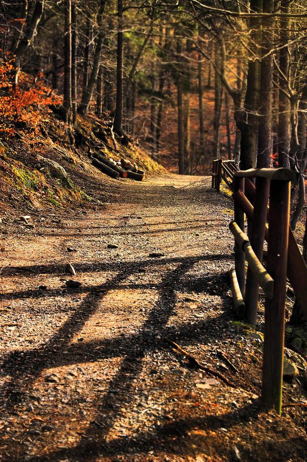 Follow the Path by enyaa