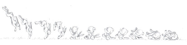 movement study of a bunny