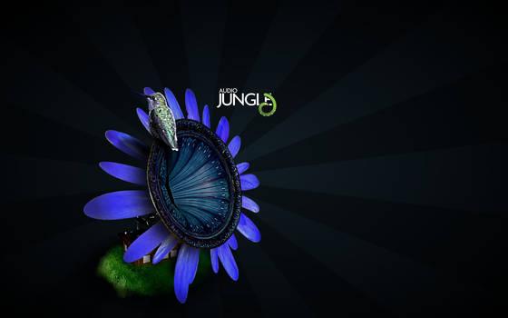 Audio Jungle: Hummingbird