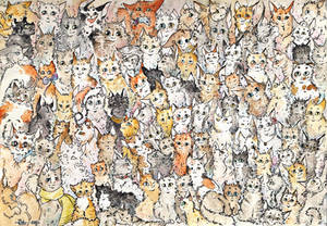 Can you count how many cats are there?