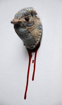 Til Death- Jenny wren