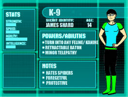 Young Justice OC