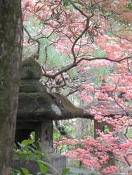 Kamakura 39 by Hikaru979