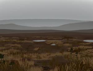 Brush Test 2: Wetlands