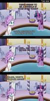 Ask Pun Pony - The Spa