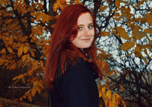 Follow autumn 7