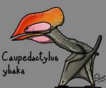 Caupedactylus