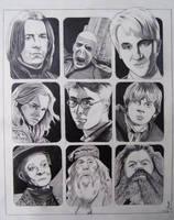 Harry Potter- Friends and Foe by professorwagstaff
