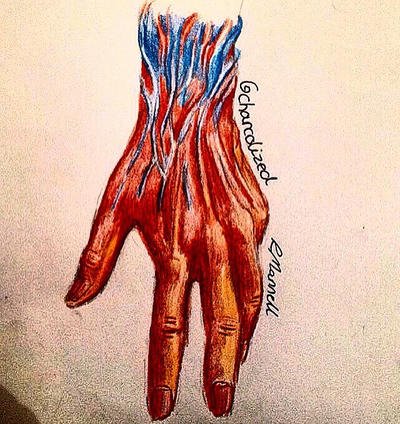 Hand  by charcolized