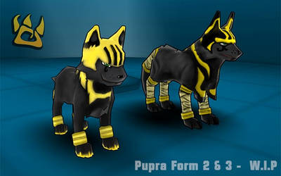 Pupra Form 2 and 3