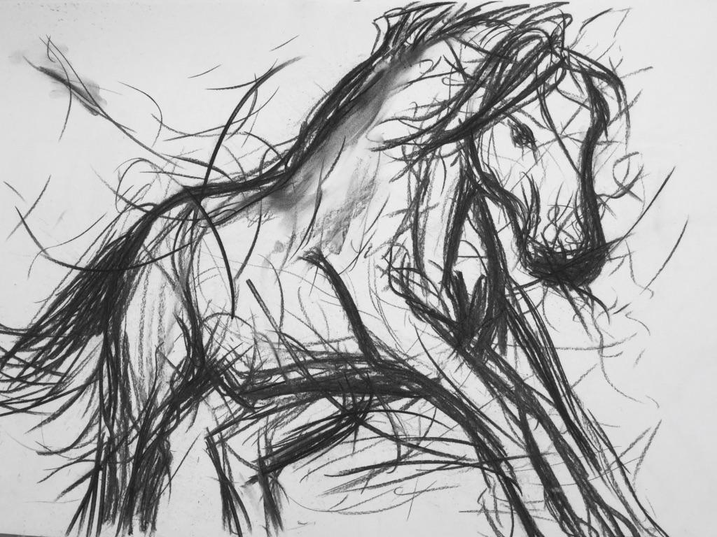 Messy charcoal horse