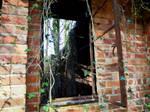 Old windows 2