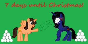 Pony Christmas Countdown (7)