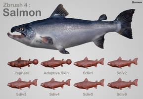 Salmon Process