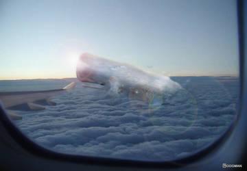 Sperm Whale Jump by gogman