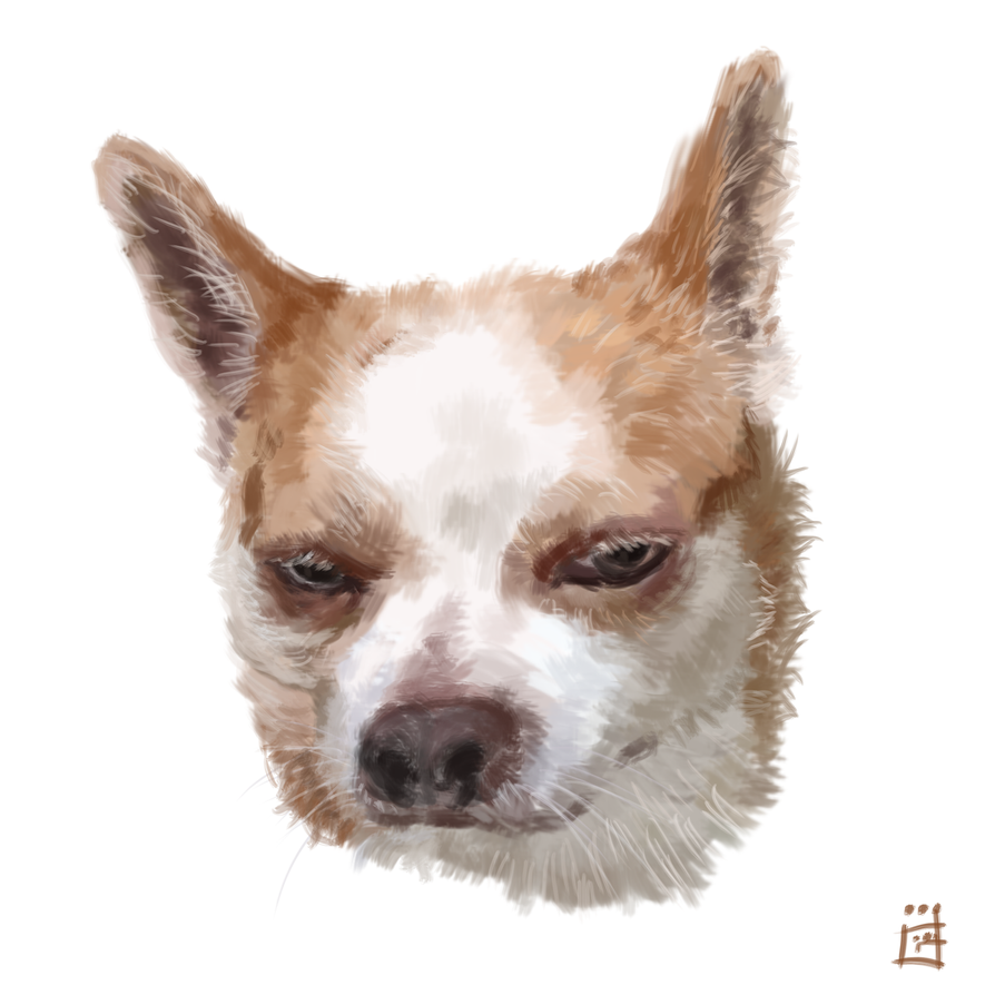 Diamond One Face Dog by gogman