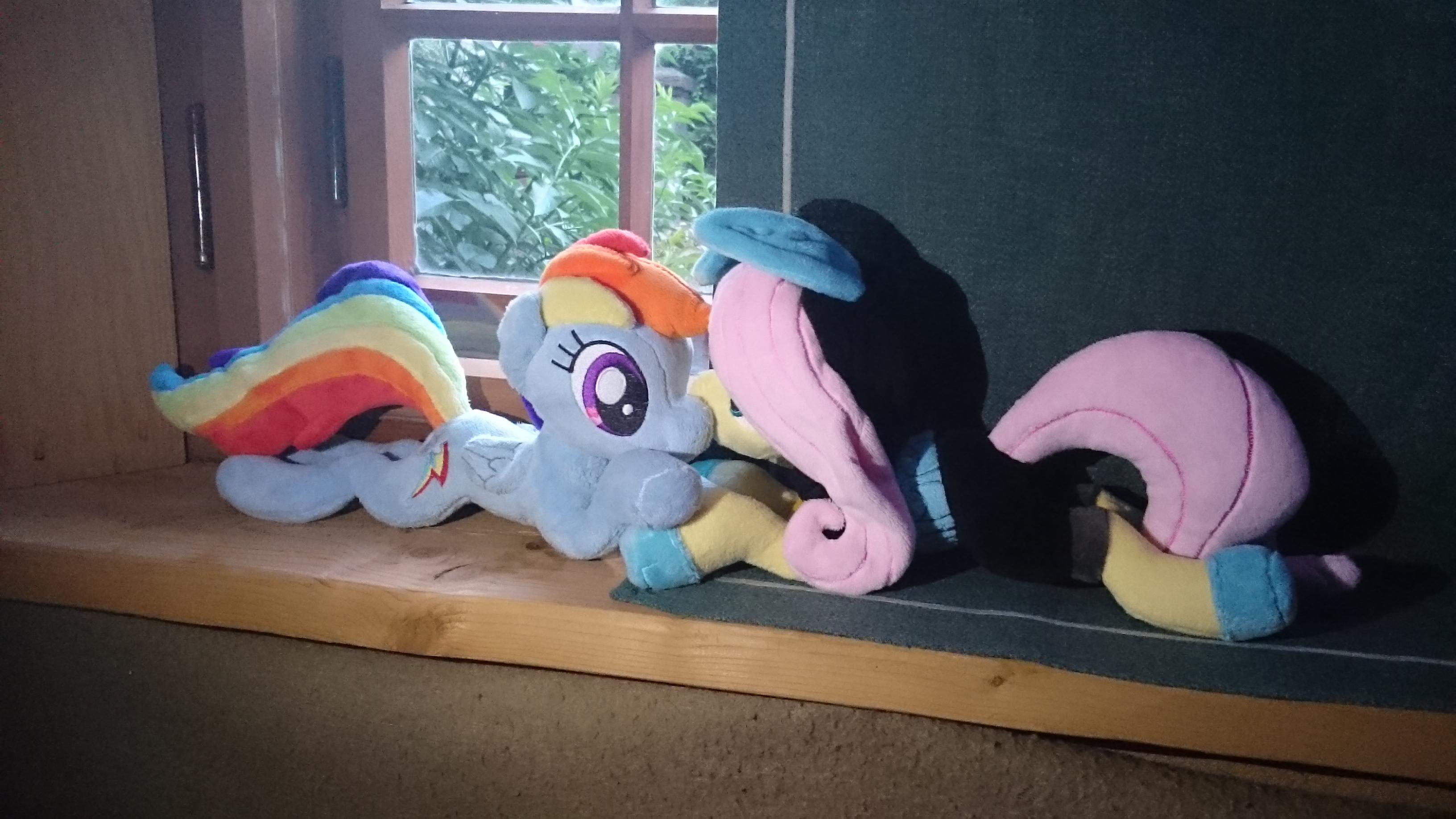 [Image: rainbow_dash___fluttershy__handylicht_be...a9tbgn.jpg]