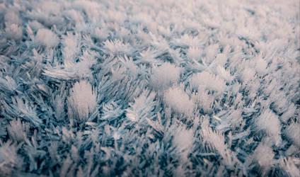 Frosty Bonnet