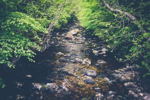 Water stream 2