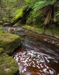 The Snug River
