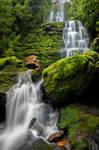 Adamsons Falls