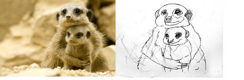 Meerkat family by deviantbluebug