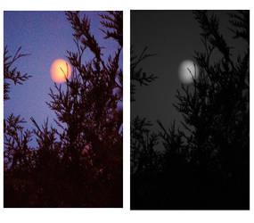 Lunatic moon by cccheat
