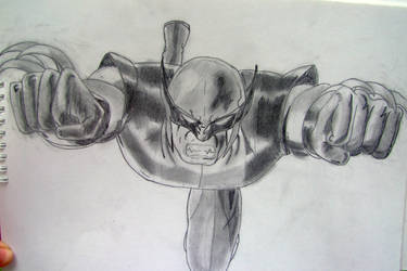 Wolverine from X men