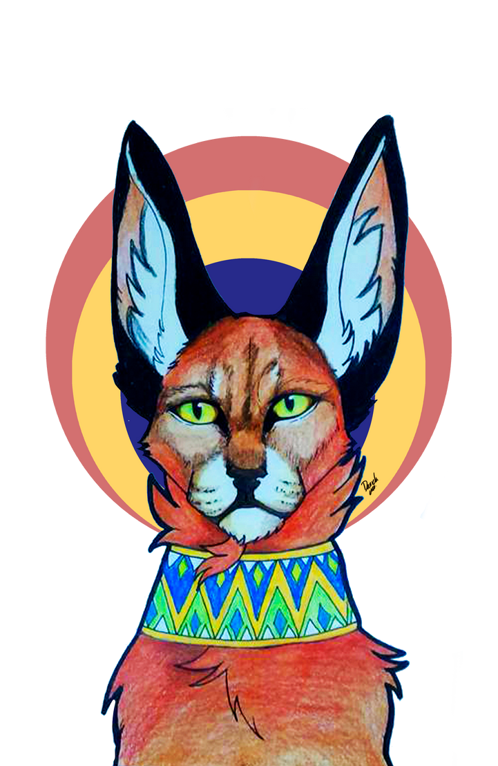 Caracal by Lalobadelcrepusculo
