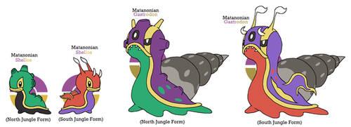 Matano EX Pokemon #017-018