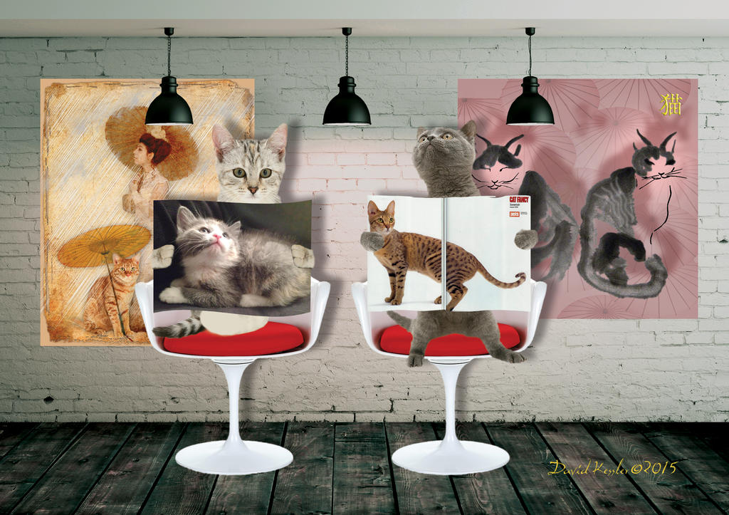 chats de ville   greeting card design by smoocherz1
