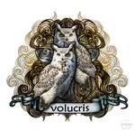 Volucris