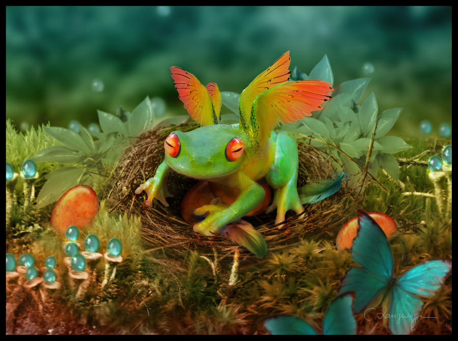 Magic Frog by CassiopeiaArt