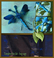Tomahna blue bug by CassiopeiaArt