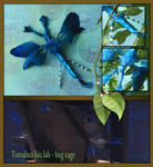 Tomahna blue bug