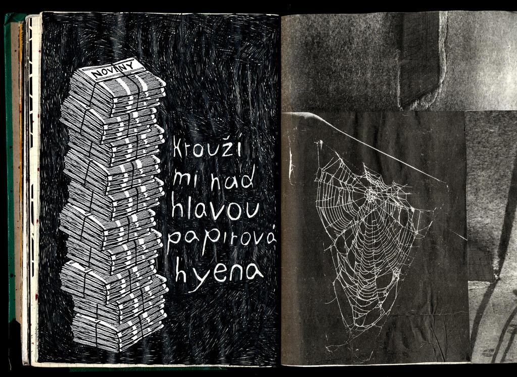 27-28 Paper Hyena by karrimu