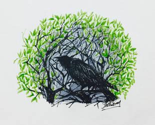 Crowing by sk8ternoz