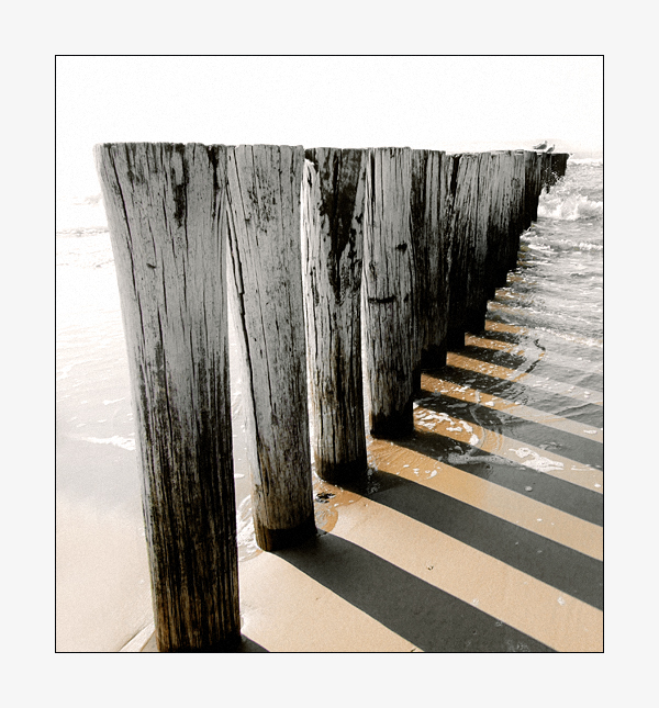 Domino by MrEz