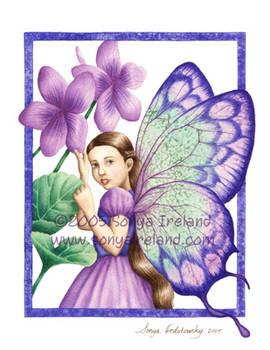 Voilet Fairy