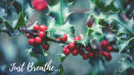 Just Breathe by phoenixwholistic