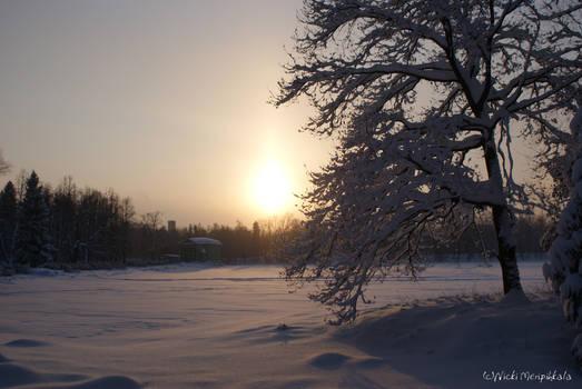 Winter in Gatchina 4