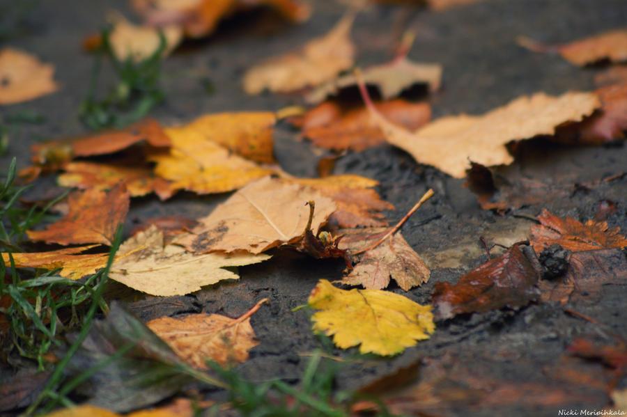 Autumn by hellnicki